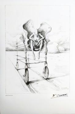 Wózek anatomiczny