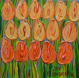 Kwiaty-tulipany 14