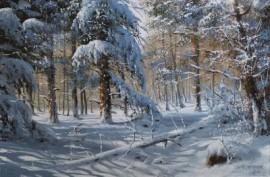 Zima w szacie