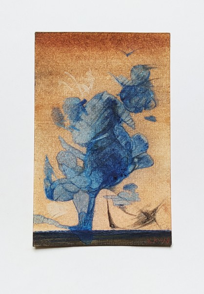 Drzewo niebieskie