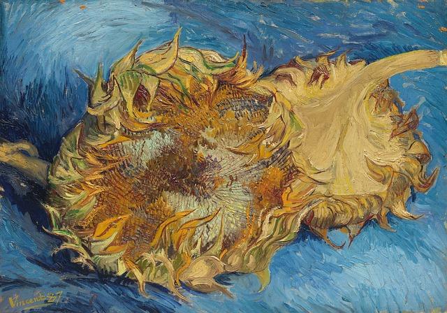 Malarstwo kwiatowe słoneczniki. Galeria Sztuki Foksal 17